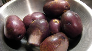 Purple Sun Potatoes, favorites of Louis XIV.  Not really.